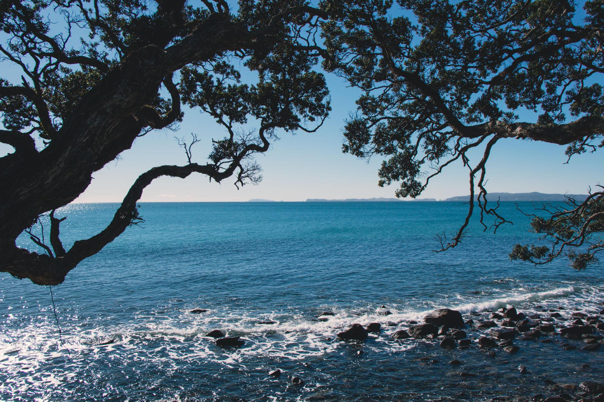 New Zealand beach